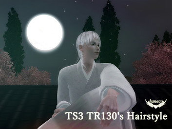 TS3 TR130's Hairstyle