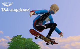TS4 Skateboard set