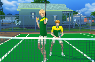 TS4 tennis set