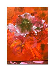 daily note #1 - 030521 - 31,2 x 22 cm aan Elisa