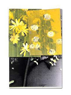 338 - acv - 220321 - 30,7 cm x 20,8 cm aan Marianne L. van der Meer