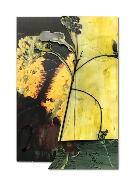 239 - acv - 101220 - 31,2 x 21,3 cm aan Susana Mulas Lastra