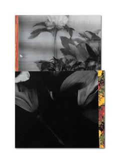 daily note #15 - 210521 - 32,1 x 21,9 cm aan de Kunstbaron
