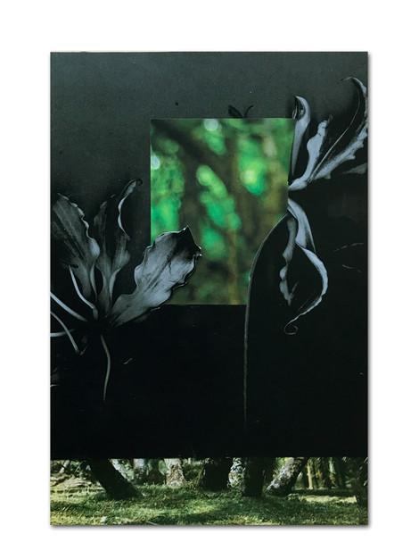 293 - acv - 050221 - 29,2 x 20 cm aan Alex Thoma