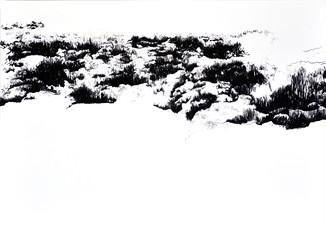 barren 1