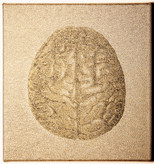 Anke LandDas Gehirn28 x 30 cmJacquard geweven