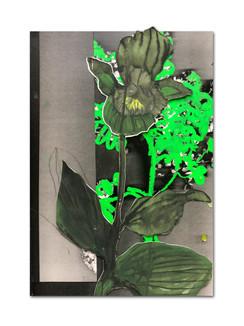 356 - acv - 090421 - 34,7 cm x 23,8 cm aan Miranda Straten