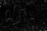 Annegien van DoornUntitled80 x 120 cmfoto op bubond + ophangprofiel3+2AP