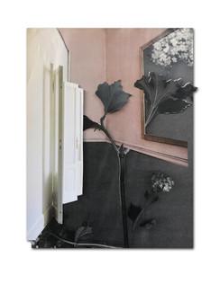 354 - acv - 070421 - 29,8 cm x 22,8 cm aan Rene van der Valk