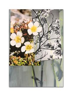 320 - acv - 040321 - 29,7 cm x 20,8 cm aan Maaike Oldenhoven