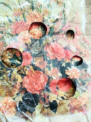 Anook Cleonnez.t.20 x 30 cmprint en grafiet