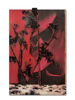 361 - acv - 140421 - 33,1 cm x 21,5 cm aan Myriam Wijgman