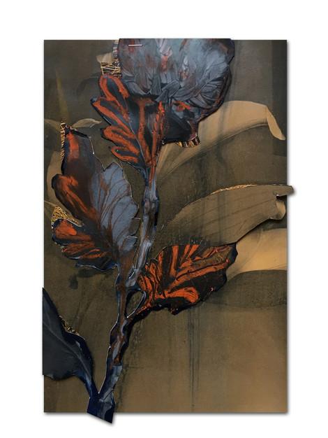 277 - acv - 200120 - 32,8 x 21,5 cm aan Zwaan Duinker