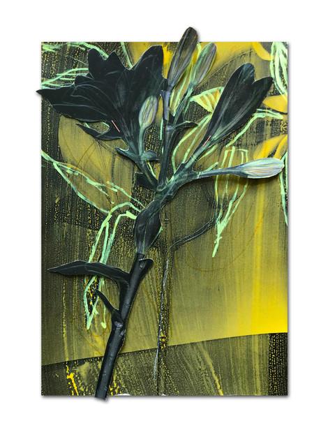 311 - acv - 230221 - 33 cm x 22,5 cm aan Sanne van Rozendaal