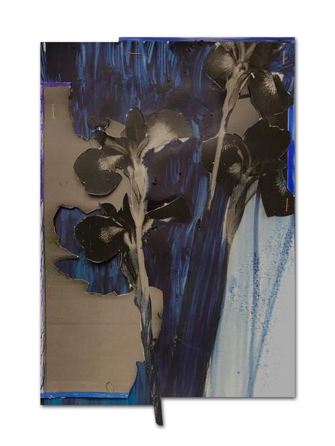 253 - acv - 241220 - 36,2 x 24 cm Consolation Piece aan Alex Thoma