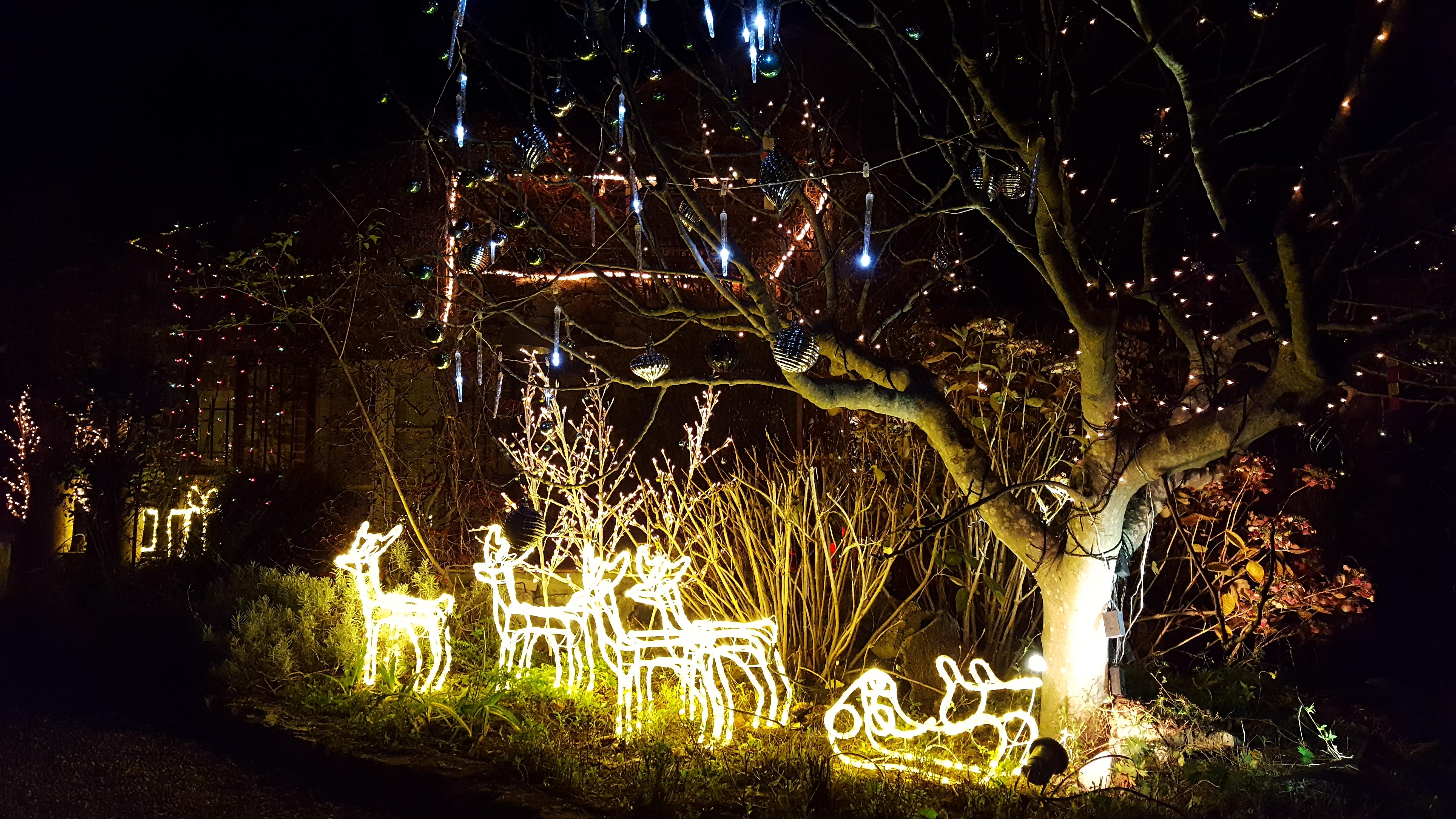 Noël au Mas