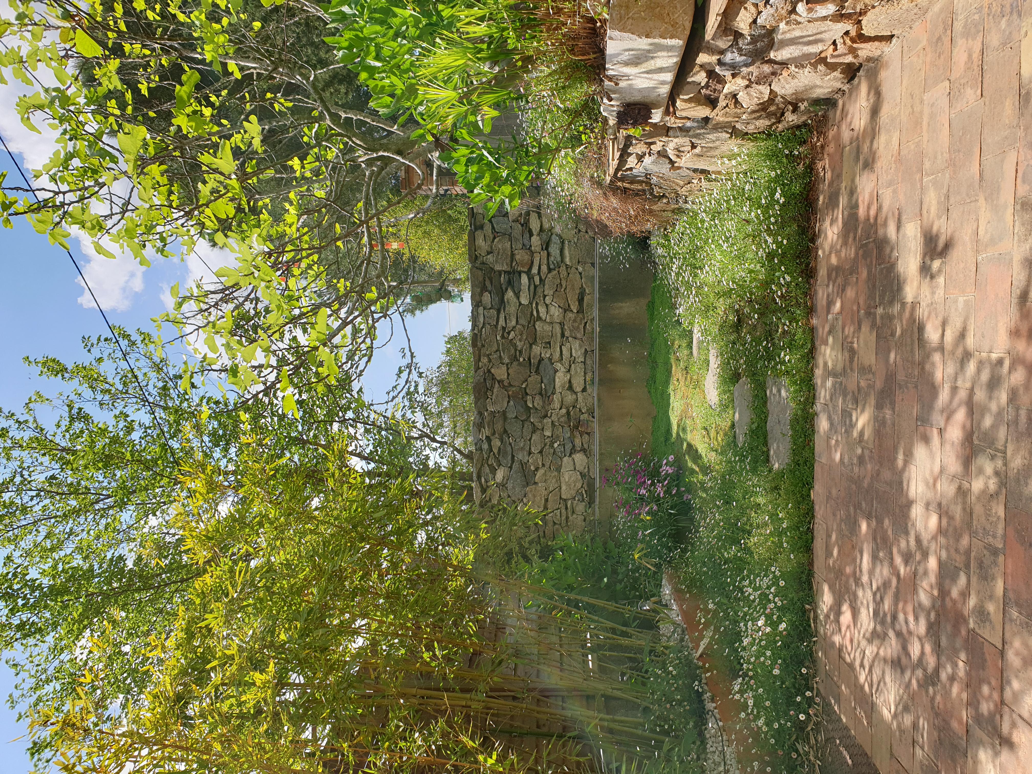 le jardin du logement les bambous