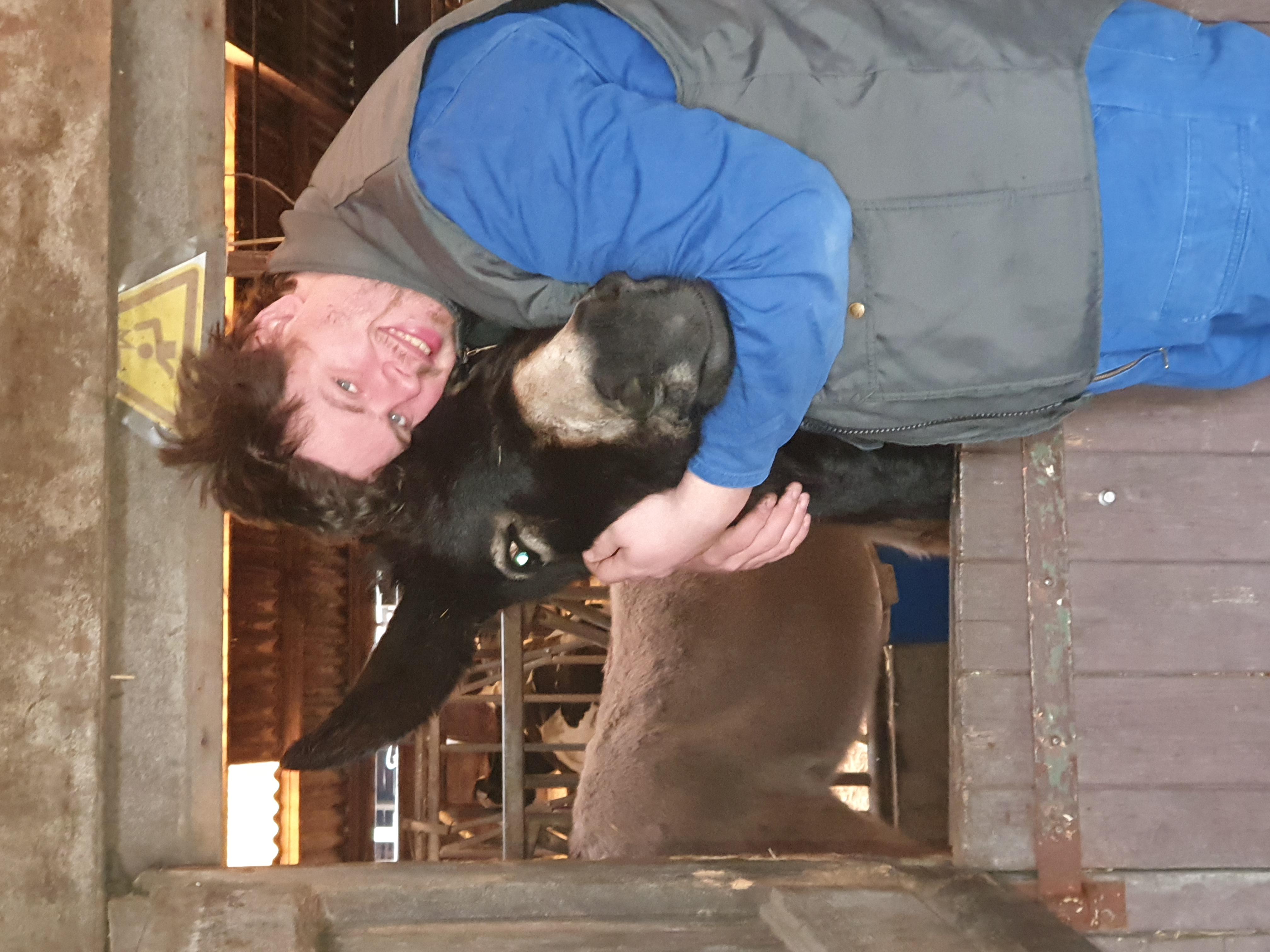 genieten van de dieren op de boerderij