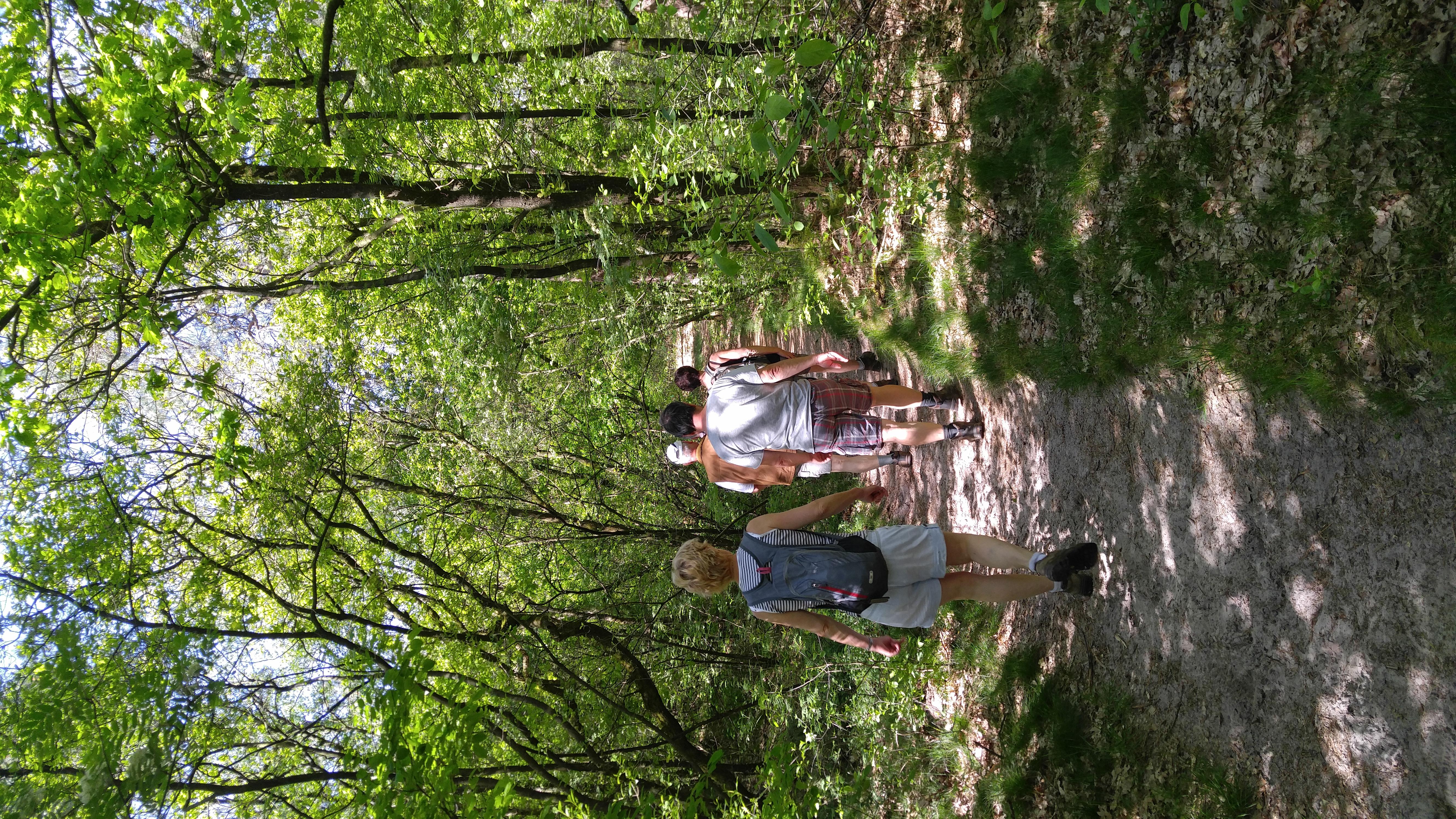 boswandeling vanaf boerderij camping