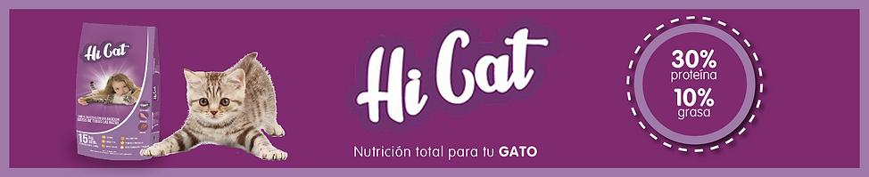 HiCat.png