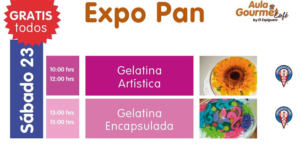 EXPO PAN SÁBADO 23