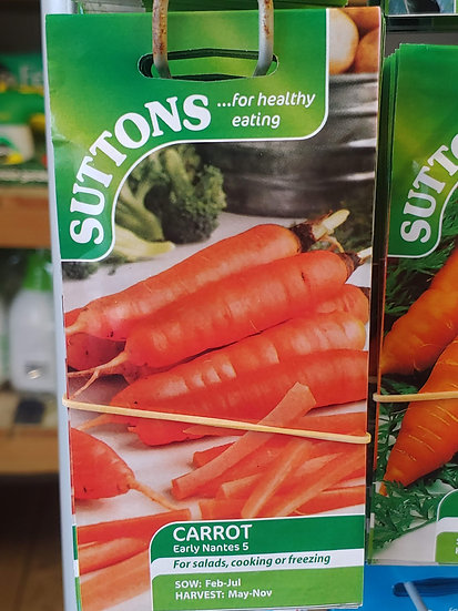 "Carrot "" Early Nantes 5"""