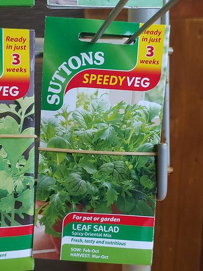 "Lead Salad ""Spicy Oriental Mix"""