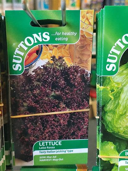 """Lettuce """"Lollo Rossa"""""""