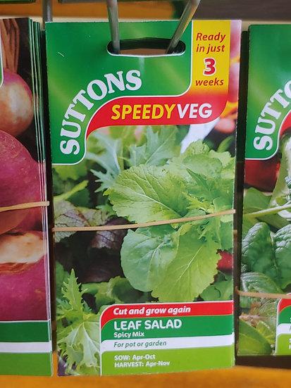 "Leaf Salad ""Spicy Mix"""
