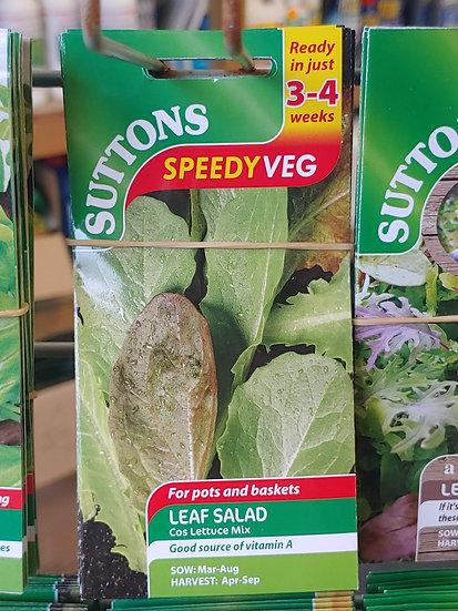"""Leaf Salad """"Cos Lettuce Mix"""""""