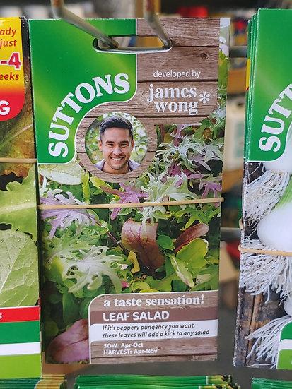 "Leaf Salad ""Full On And Fiery"""
