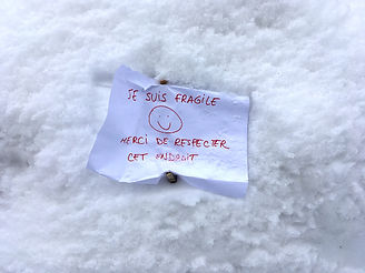 Igloo fragile.jpg