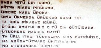 kikuyu-on.jpg