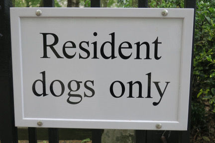 London res dog.jpg
