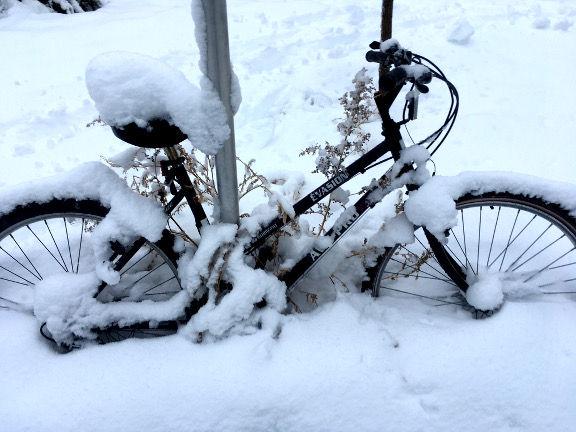 neige vélo.jpg