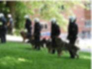 RC policiers 1.jpg