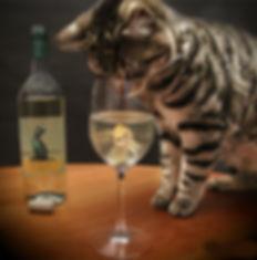 RC cuisine vin.jpg