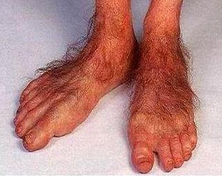 pieds hobbit.jpg