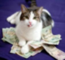 rich_cat_by_evilangel100-d3hbgha.jpg