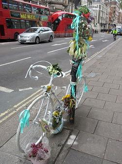 L bicycl.JPG