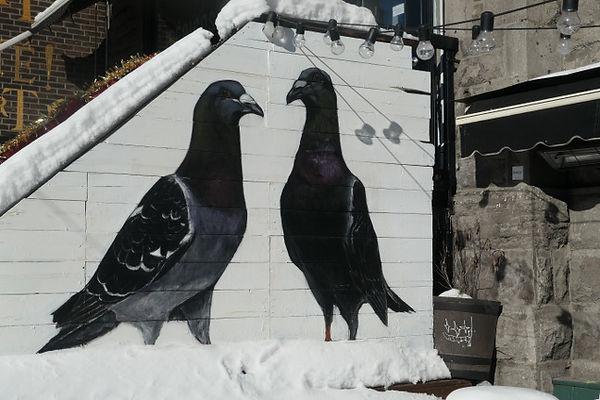 deux pigeons.jpg