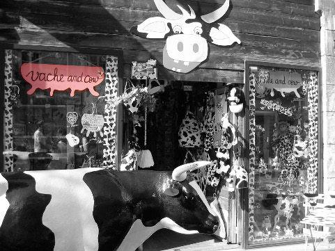 PH vache & cow 1 - copie.jpg