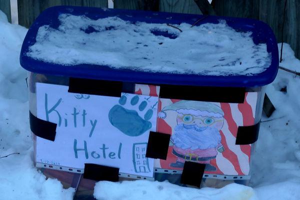 kitty hotel.jpg