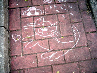 chat faune urbaine.jpg