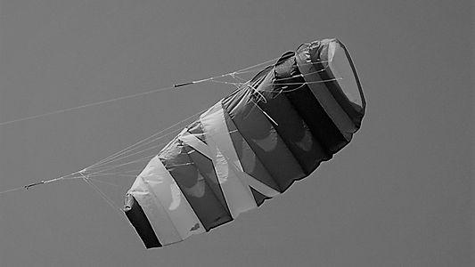Kite .jpg