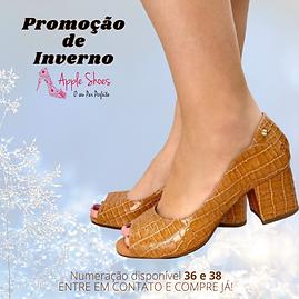 Promoção de Inverno (11).png