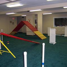 Dog-School-of-Louisville-Interior-Photo.
