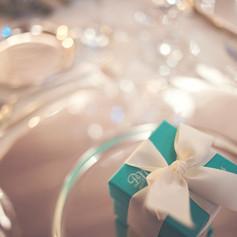 tiffany_blue_winter_wedding_athens (108)