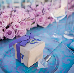 sanrotini_lavender_wedding (161).jpg