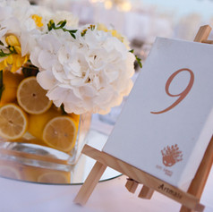 lemon_wedding_athens_riviera (200).jpg